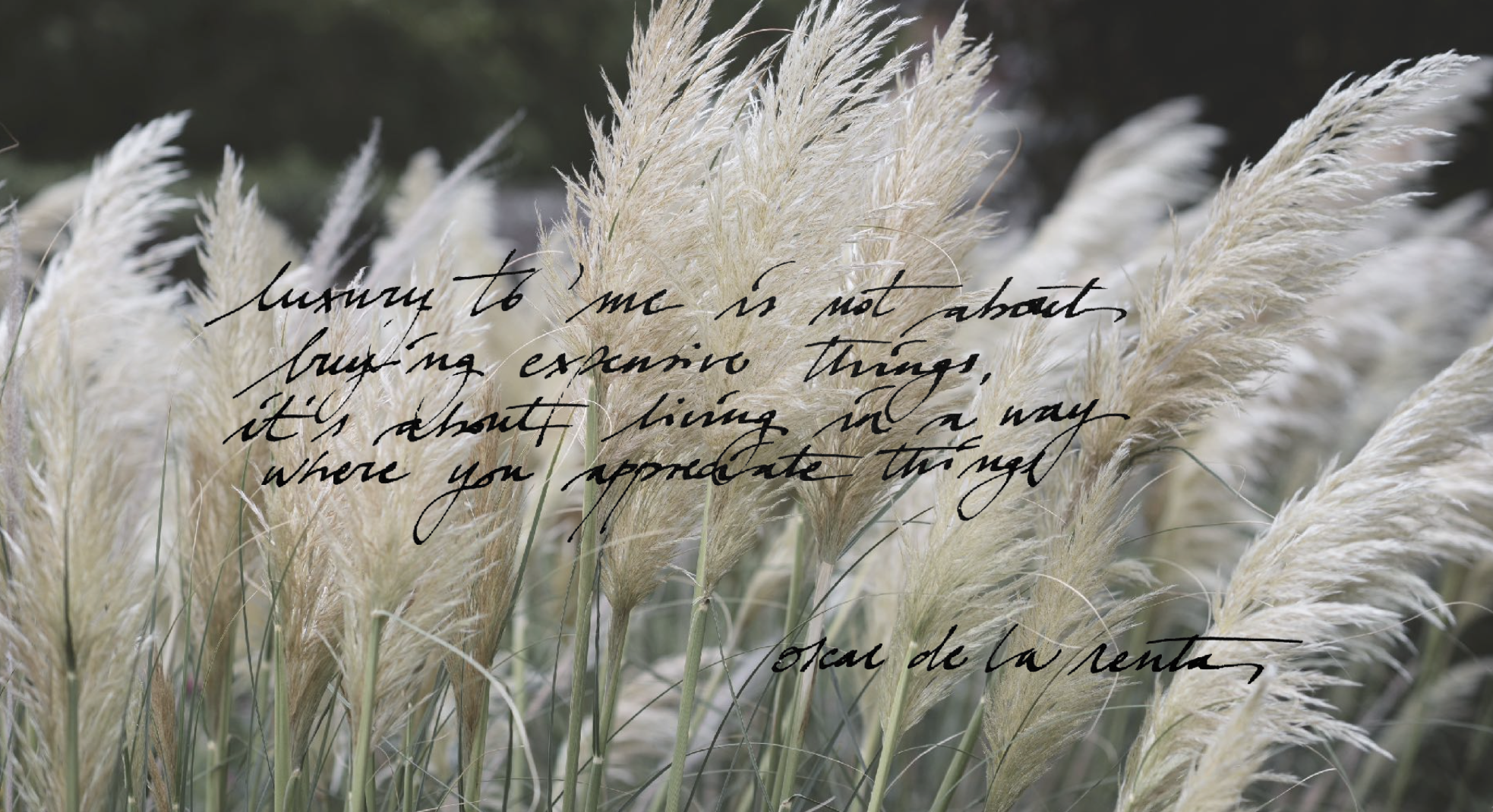 Quote- Into The Secret Garden